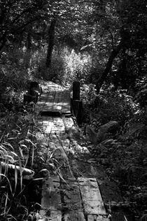 path by Zuzanna Nasidlak