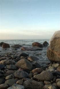Steinküste von Max Nemo Mertens