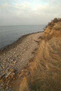 Blick auf den Strand von Max Nemo Mertens