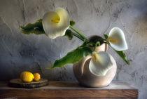 01-flores-de-ibiza-calla