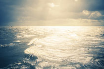 Meeresleuchten by Thomas Schaefer