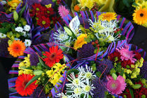 Colorful flowers for sale by bob bingenheimer