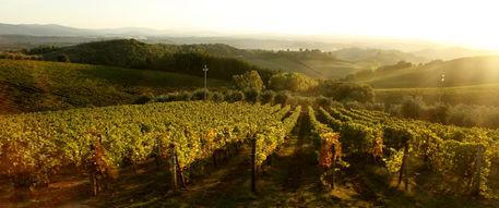 Tuscany-honeymoon