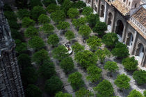 Courtyard of the Cathedral of Seville, Spain by bob bingenheimer