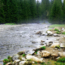 mountain stream von Beata Wagner