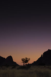Spitzkoppe Purple Sunset von Russell Bevan Photography