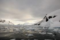 Antarctica by Jorge Fernandez