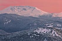 Mount St Helens in evening alpenglow