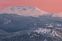 Mount St Helens in evening alpenglow by Ed Book