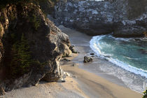 California Julia Pfeiffer Burns State Park by Lennox Foster