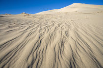sand dune ripples by Ed Book