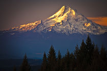 Mount Hood morning alpenglow von Ed Book