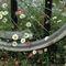 Daisy-wheel