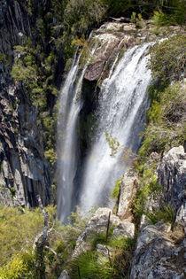 Minyon-falls-6557