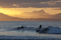 Sunset Surfers by Mike Greenslade