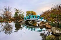 Japanese Foot Bridge In Autumn
