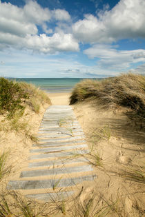 Path to the beach - Dolphin Sands, Australia by Jess Gibbs