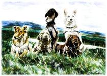 Hunde von Erik Mugira