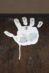 White-hand-longreach-0484