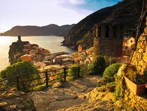 Vernazza, Cinque Terre, Italy by Marty Portier
