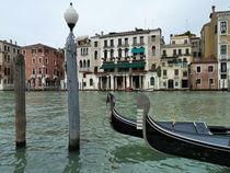 Venice by whiterabbitphoto