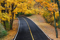 Blacktop Road In Autumn