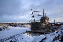 Derelict Vessel, Homer, Alaska von Paul Lemke