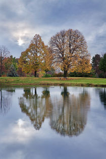 Pond Reflection von Paul Lemke