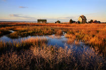 Coastal Marsh von Paul Lemke
