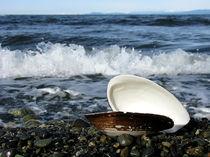 Qualicum Shell. von Guy Woolrych