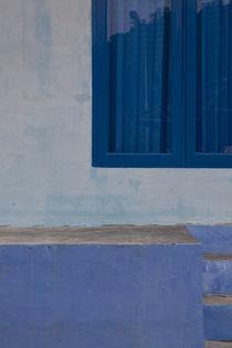 Bungus-blue-2-0578