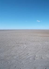 Desert-vertikal