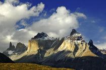 Torres del Paine von Jorge Fernandez