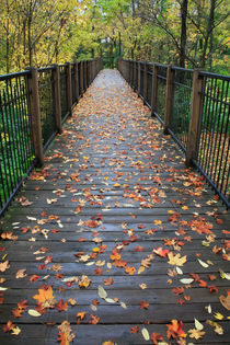 'Autumn Foot Bridge' von Paul Lemke