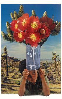 Sonic Bloom von Jesse  Treece