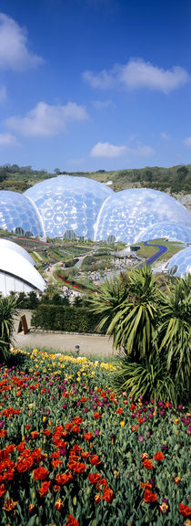 The Eden Project by Mike Greenslade