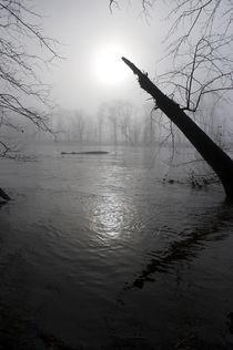 Scenic-seasons-16-010710