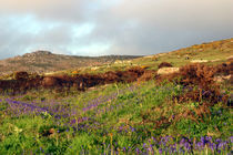West Penwith, Cornwall von Mike Greenslade