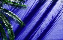 Cobalt Palm von Mike Greenslade
