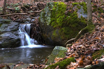 Waterfall on Appalachian Trail  by Douglas Graham