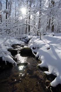 Snow covered creek von Douglas Graham