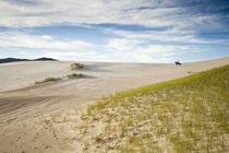 Dunes of Joaquina Beach, Florianopolis by Ricardo Ribas