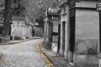 cemetery by Ricardo Anderson