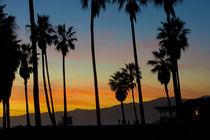Venice Beach von Pete Saloutos