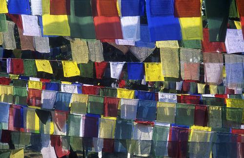 Nepal-lumbini-flags-162
