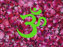 OM - Green on Pink by James Menges