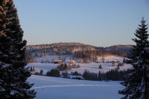 Wintersonne in Schweden by Intensivelight Panorama-Edition