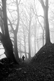 Yorkshire mist by Matt Cope
