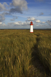 Lighthouse with Dune Grass and Clouds von Wolfgang Kaehler