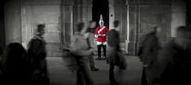 London. Horse Guards Parade. Guardsman. by Alan Copson